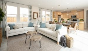 Tips for Designing a Great Room